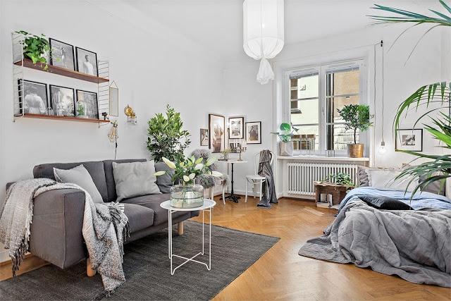 Plante de interior și tonuri de gri în decorul unei garsoniere de numai 22 m²
