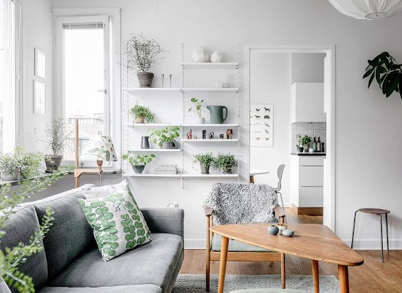 alb-gri-verde-si-multe-plante-de-interior-apartament-59-mp