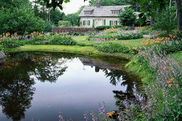 Cum să îți construiești singur un iaz în grădină