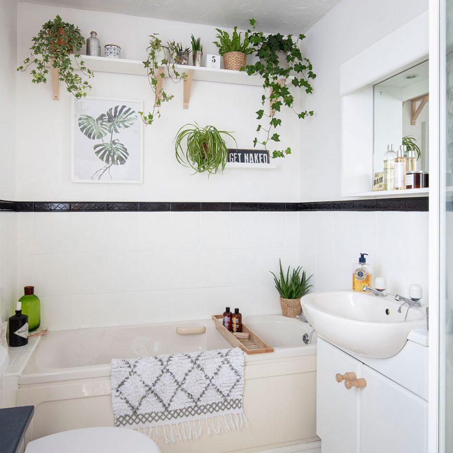 idee de amenajare cu plante in baie
