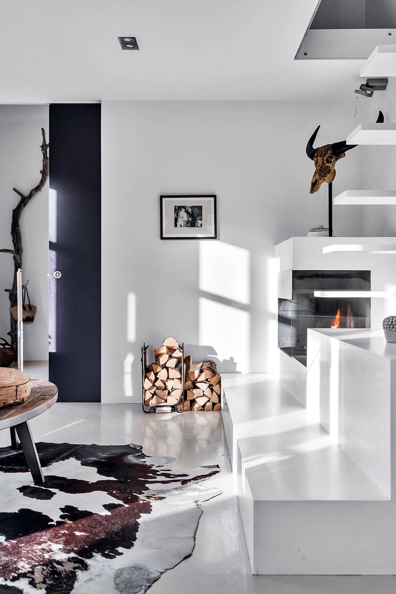 ramura de copac in decor