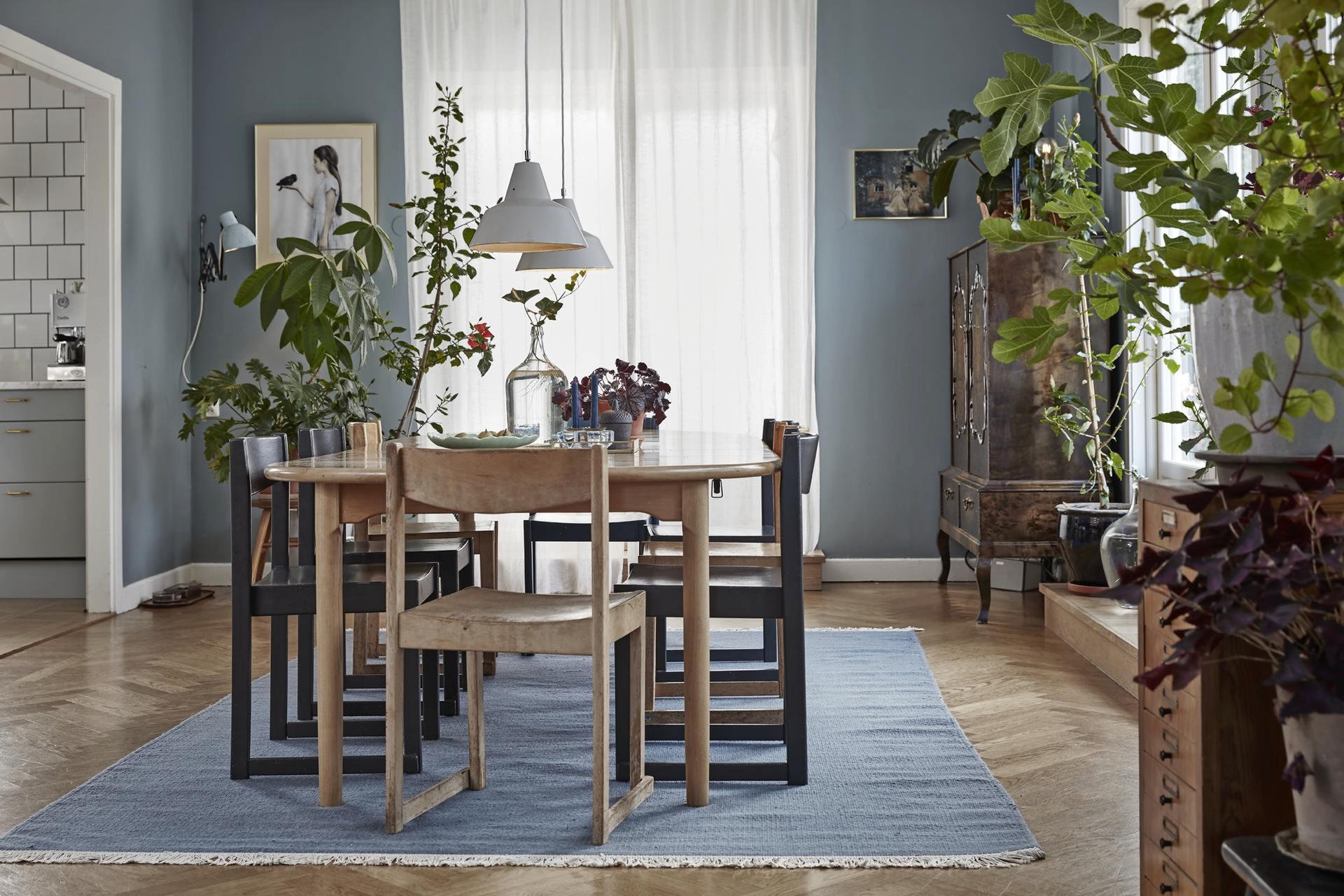albastru in sufragerie scandinava