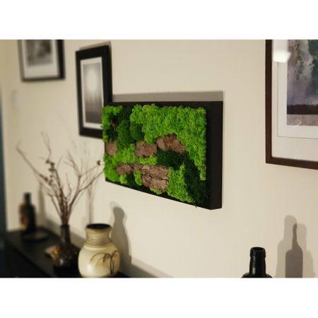 tablou cu licheni naturali