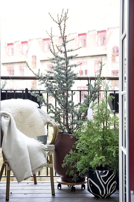 Decor de Crăciun într un apartament plin de tablouri 18